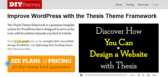 diythemes Top 10 Preferred WordPress Theme Development Frameworks