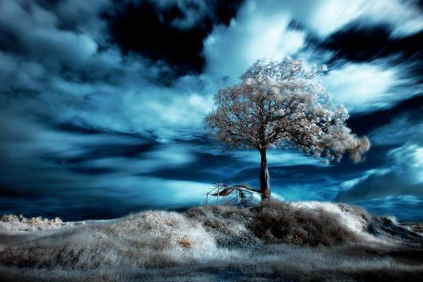 blue sky infrared photography21 45 Impressive Examples of Infrared Photography