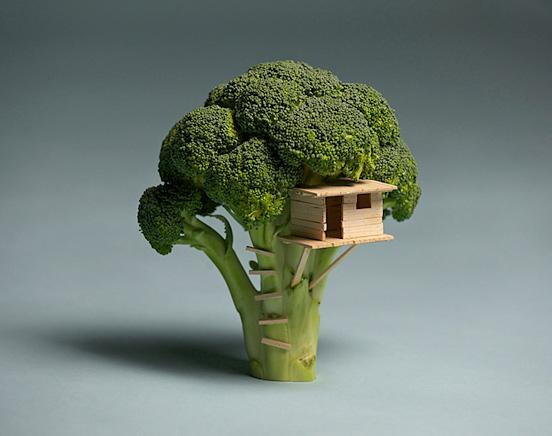 broccoli casa L11 55 Esempi Visionario di Creative Photography # 6