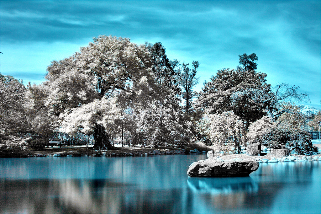cool infrared photography11 45 Impressive Examples of Infrared Photography