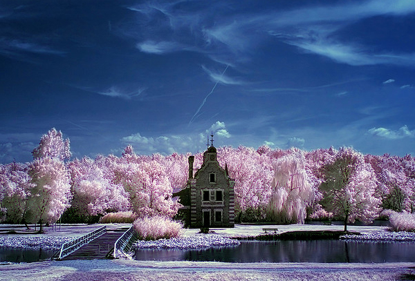 cottoncandy factory 45 Impressive Examples of Infrared Photography