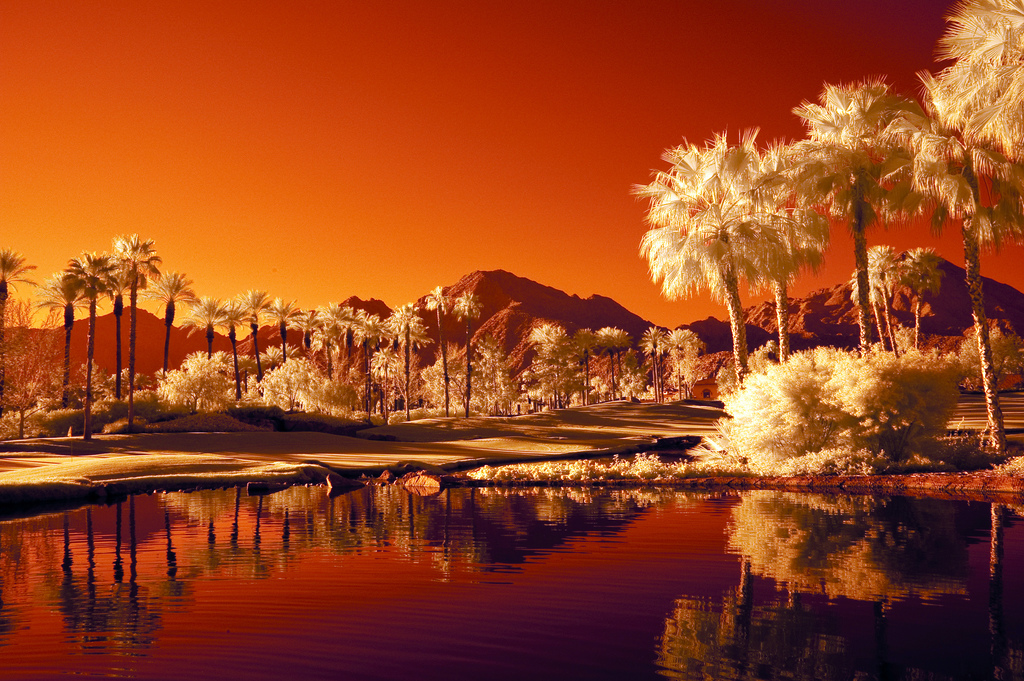 desert infrared photography11 45 Impressive Examples of Infrared Photography