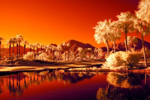desert infrared photography11 45 Impressive Examples of Infrared Photography