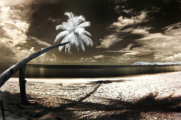 enhanced buzz 3637 1315243259 311 45 Impressive Examples of Infrared Photography