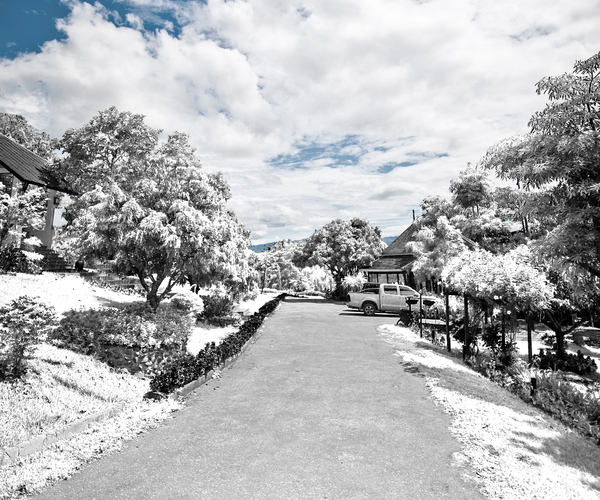 infrared 45 Impressive Examples of Infrared Photography