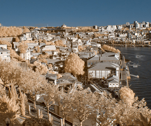inrfaporto 45 Impressive Examples of Infrared Photography