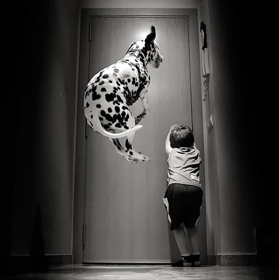 saltare l1 55 Esempi Visionario di Creative Photography # 6