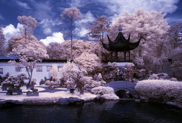 kill bill 45 Impressive Examples of Infrared Photography