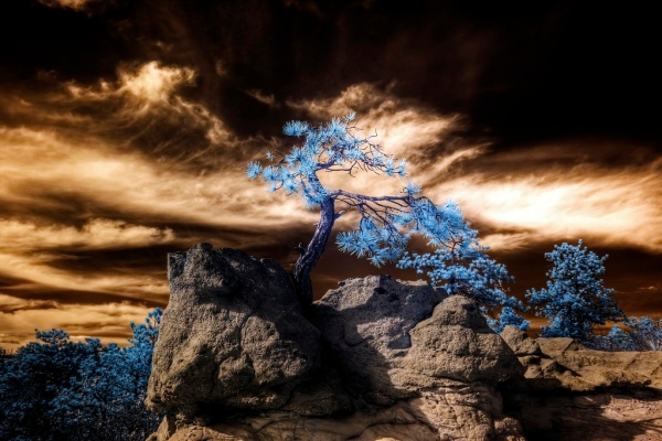 mountain infrared photography11 45 Impressive Examples of Infrared Photography