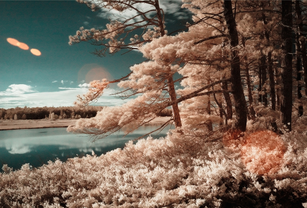 stockton infrared 45 Impressive Examples of Infrared Photography