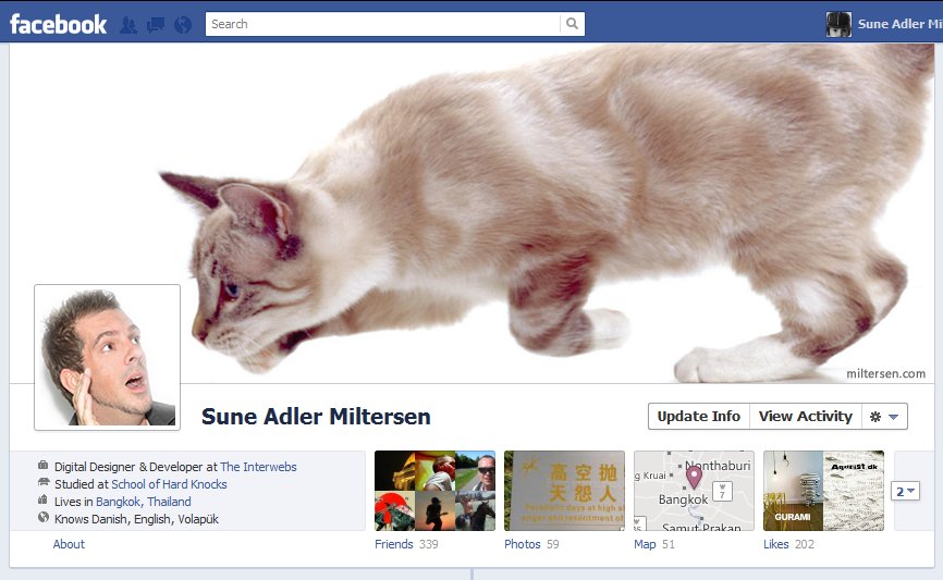 bigcat1 40 Creative Examples of Facebook Timeline Designs
