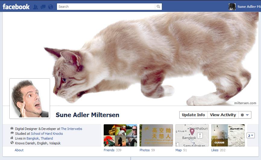 bigcat1 40 Creative Examples of Facebook Timeline Designs