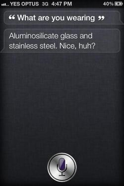 tumblr lt1kahpl6e1r4eoiuo1 2501 50 Hilarious Things That Siri Says