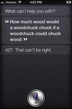tumblr lt4o5cnshd1r4eoiuo1 2501 50 Hilarious Things That Siri Says