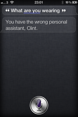 tumblr lt4o5i43wo1r4eoiuo1 2501 50 Hilarious Things That Siri Says