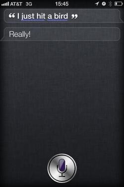 tumblr ltc15ydgck1r4eoiuo1 2501 50 Hilarious Things That Siri Says