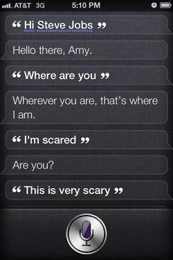 tumblr ltc1d5mzgu1r4eoiuo1 2501 50 Hilarious Things That Siri Says