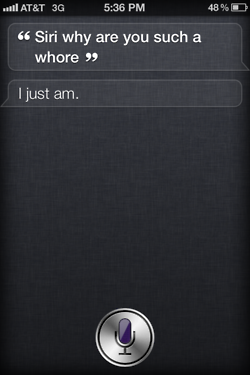 tumblr ltc1lhxasx1r4eoiuo1 2501 50 Hilarious Things That Siri Says