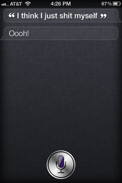 tumblr ltc26shymf1r4eoiuo1 2501 50 Hilarious Things That Siri Says