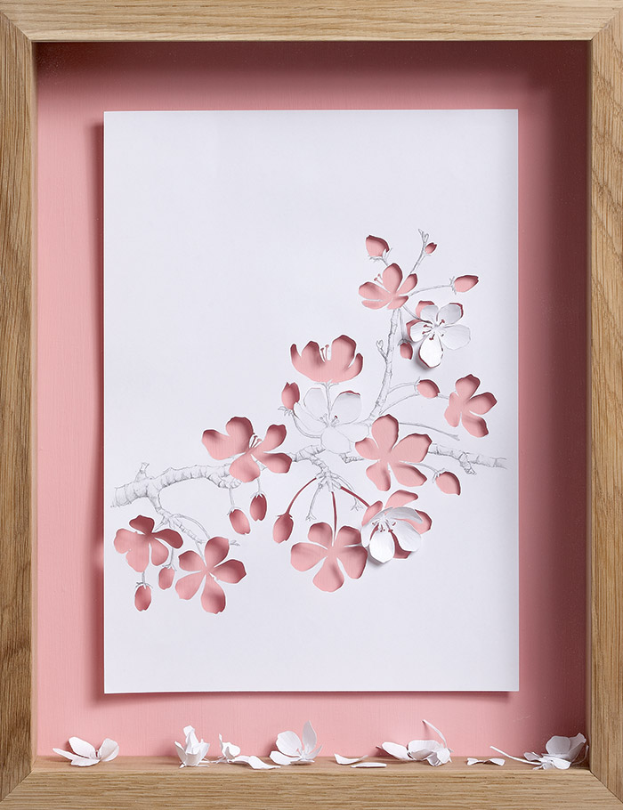 15 apple blossom 11 25 Striking Framed Papercuts by Peter Callesen