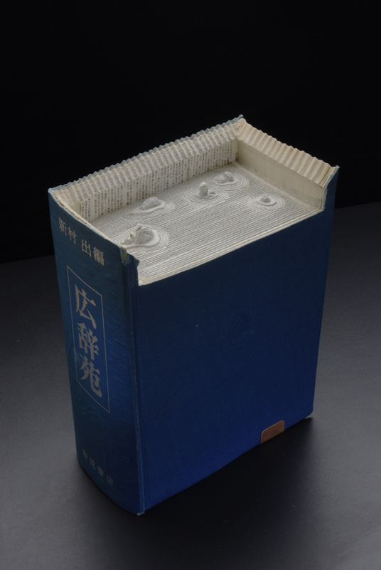 18 ryoanjis v21 Mind Blowing Book Sculptures by Guy Laramee