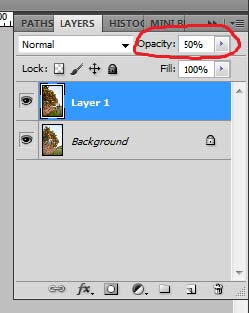 reducing layer opacity to 50 Multiplicity in Action Photoshop Tutorial