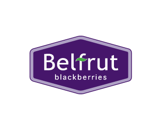 6b77ef01d09932679ae2876d357c1fa21 40 Flourishing Fruit and Vegetable Logo Designs