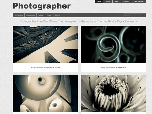 inspiration feed definitive guide to free wordpress themes for photography 14  Your Definitive Guide To Free WordPress Themes For Photography
