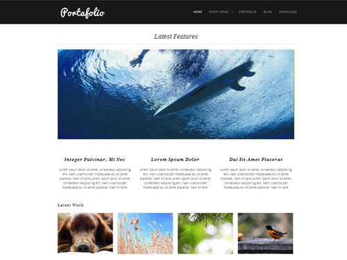 inspiration feed definitive guide to free wordpress themes for photography 16  Your Definitive Guide To Free WordPress Themes For Photography
