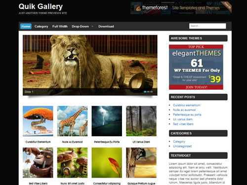 inspiration feed definitive guide to free wordpress themes for photography 20  Your Definitive Guide To Free WordPress Themes For Photography