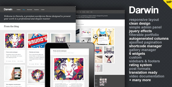 1   large preview1 40 Premium Responsive Portfolio WordPress Themes
