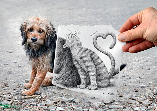 dog and cat l1 45 Visionary Examples of Creative Photography #8