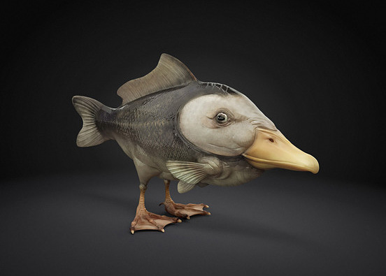 duckbill fish l1 40 Entertaining Animal Photo Manipulations