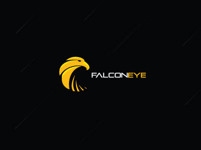 falcon eye1 55 Pleasant Examples of Bird Logo Designs