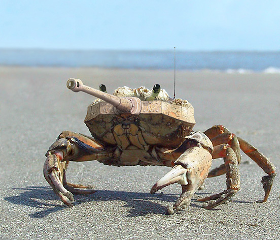 tankcrab l1 40 Entertaining Animal Photo Manipulations