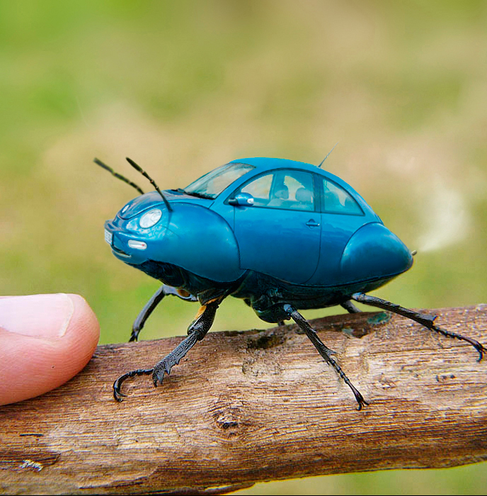 vwbeetle by waltervansanten1 40 Entertaining Animal Photo Manipulations