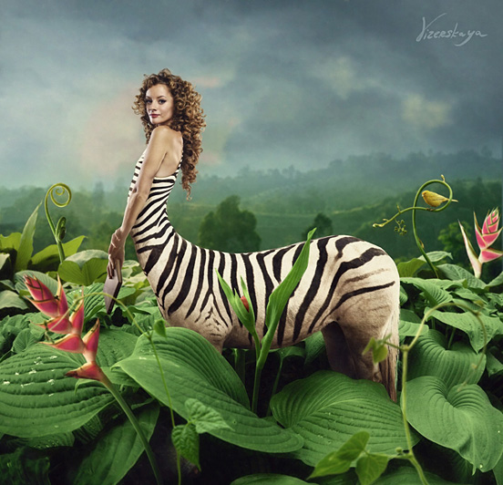 zebra l1 40 Entertaining Animal Photo Manipulations