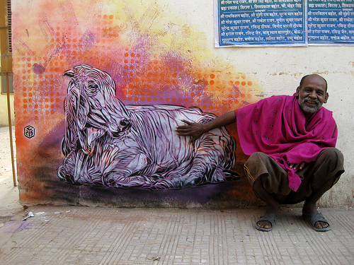 2946940864 cb197b1abe Graffiti Stencil Art by Street Artist C215