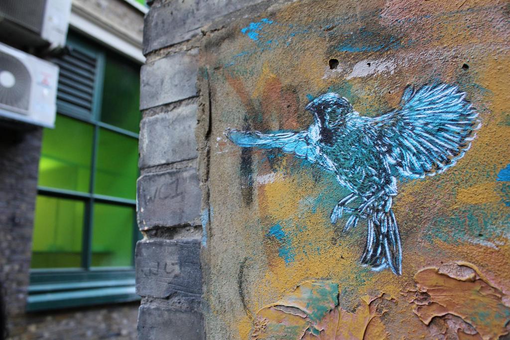 5187255035 bdcfb39dbd b Graffiti Stencil Art by Street Artist C215