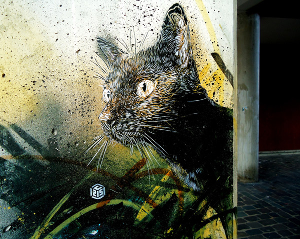 c215 2 Graffiti Stencil Art by Street Artist C215