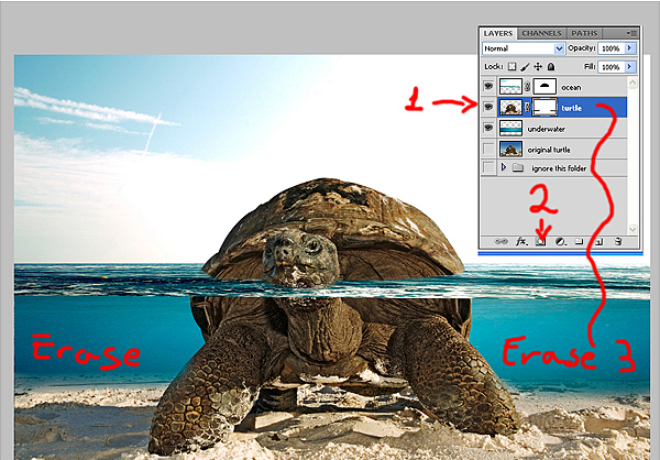 download15 Photoshop Tutorial: Underwater Turtle