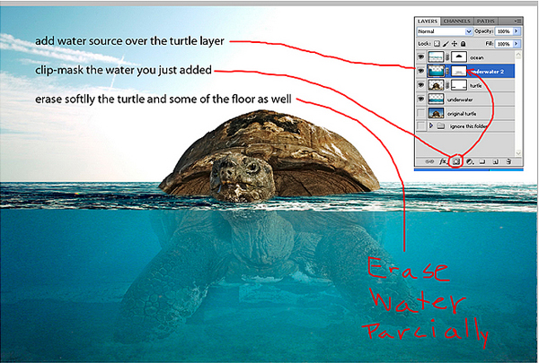 download16 Photoshop Tutorial: Underwater Turtle