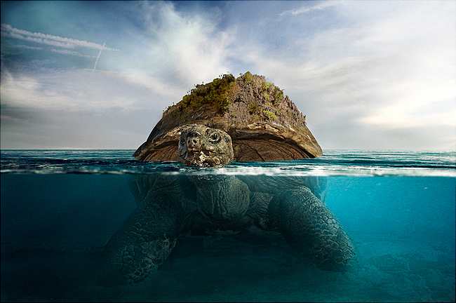 download21 Photoshop Tutorial: Underwater Turtle