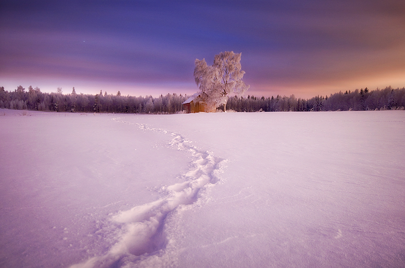 dreamlandi1 Emotional Photography by Mikko Lagerstedt