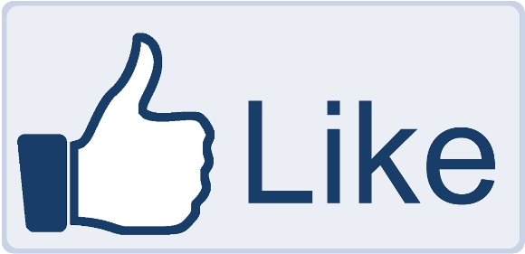 facebook like button big1 Social and Search Engines Tips for Restaurant Websites