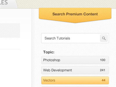 tutsdribble21 45 Beautiful & Functional Search Box Designs