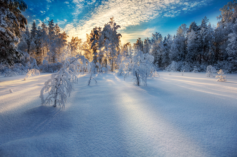winterlight1 Emotional Photography by Mikko Lagerstedt