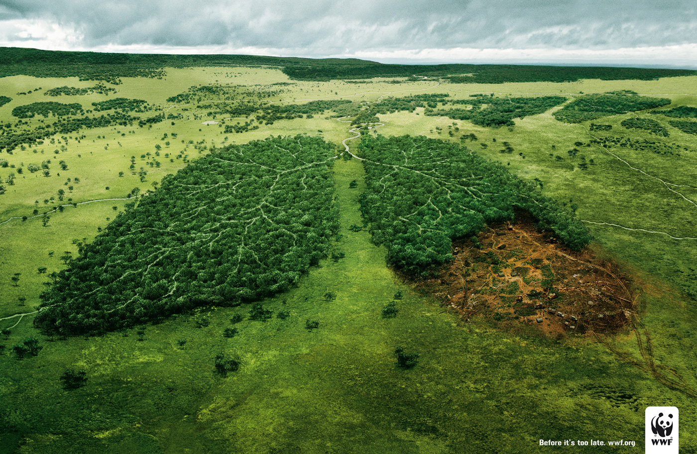 wwf lungs1 20+ Environmental Awareness Advertising Campaigns
