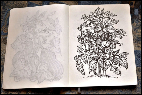9934712573463181 Sketchbook Illustration Drawings by Irina Vinnik