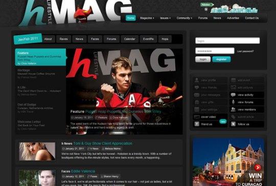571 10+ Amazing Premium Buddypress WordPress Themes